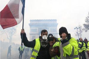 Tổng thống Pháp, Mỹ đều hủy kế hoạch tham dự WEF 2019