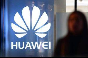 Thông tin mới vụ Ba Lan bắt giữ giám đốc Huawei vì cáo buộc gián điệp