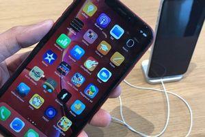 iPhone XR gây thất vọng, iPhone 2019 vẫn có biến thể LCD