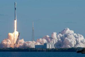 SpaceX sa thải hàng trăm nhân viên để theo đuổi nhiều dự án đắt đỏ