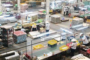 Gốm sứ Bình Dương tìm hướng giữ vững thị trường xuất khẩu