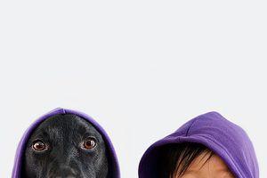 Chùm ảnh bé và chó làm tan chảy trái tim cộng đồng mạng