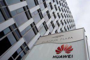Một châu Âu chia rẽ nhìn từ vụ bắt giữ giám đốc kinh doanh Huawei