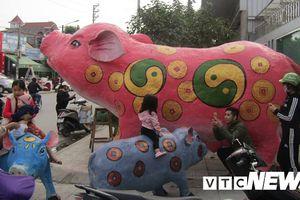 Xuất hiện đàn lợn vàng khổng lồ ở Hải Phòng