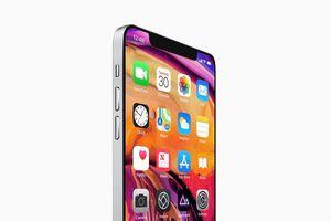 Bản dựng iPhone 11 đẹp mắt theo phong cách iPad Pro