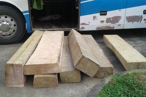 Một ngày, bắt giữ 2 vụ chở 'vũ khí nóng' và gỗ lậu