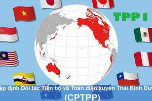 CPTPP sẽ chính thức có hiệu lực từ hôm nay, 14/01/2019