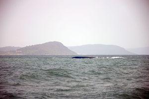 Cứu sống thuyền viên trong chiếc sa lan bị lật trên biển
