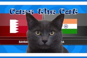 Mèo Cass dự đoán kết quả trận Ấn Độ vs Bahrain tại ASIAN CUP 2019 hôm nay