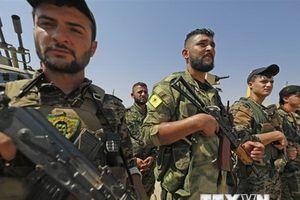 Thổ Nhĩ Kỳ cam kết tiếp tục chiến đấu chống lực lượng người Kurd