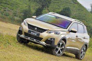 Tăng trưởng kỷ lục, Peugeot ưu đãi khách mua xe chơi Tết