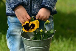 5 lý do vì sao cha mẹ nên dạy con biết làm vườn?
