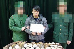 Bắt đối tượng vận chuyển 51 kg ngà voi sang Trung Quốc