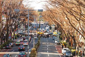 Tokyo và hành trình khám phá nhịp sống thường ngày ở Nhật Bản