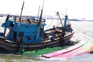 Ngư dân Bình Định cứu 2 người nước ngoài gặp nạn trên biển