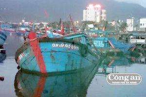 Tận diệt hải sản