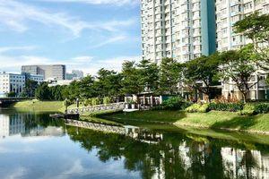 Cảm nhận từ Singapore