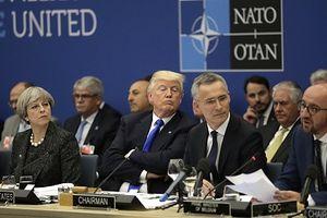 Washington 'đứng ngồi không yên' vì tin Tổng thống Trump muốn rút Mỹ khỏi NATO