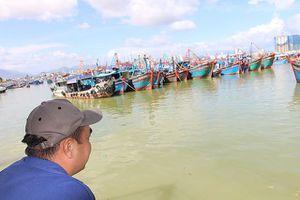 10 ngư dân mất tích trên tàu cá biển Khánh Hòa: Mở rộng vùng tìm kiếm