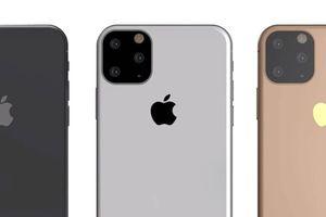 Xuất hiện hình ảnh chi tiết đầu tiên của iPhone XI 2019