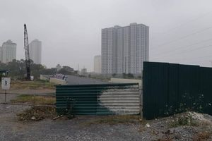 Cuối năm, đường BT nghìn tỷ tại Hà Nội vẫn quây rào để cỏ mọc