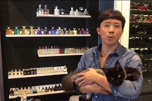 Trấn Thành 'bêu xấu' Hari Won ghen tuông với cả mèo cưng của chồng