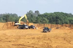 Thanh Hóa: Cần xử lý nghiêm việc Công ty Lam Sơn - Sao Vàng lợi dụng cải tạo để khai thác đất trái phép