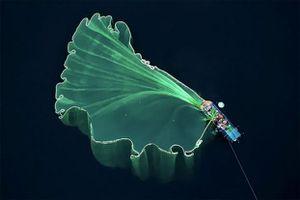 20 bức ảnh đoạt giải cuộc thi ảnh flycam quốc tế đẹp hớp hồn, bức của Việt Nam gây sốt