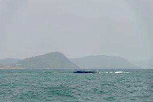 Phú Quốc: Sà lan chở gạch bị lật trên biển, 1 thuyền viên mất tích