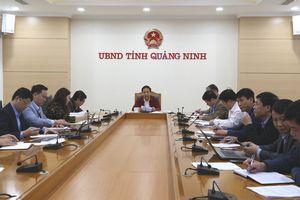 Cho ý kiến về công tác chuẩn bị tổ chức Hội chợ OCOP Quảng Ninh - Xuân 2019