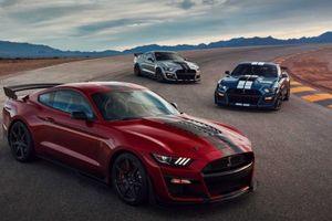 Ford Mustang Shelby GT500 2020 tỏa sáng tại Triển lãm Detroit