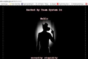 Chính phủ Mỹ đóng cửa khiến nhiều trang web liên bang có nguy cơ bị tấn công