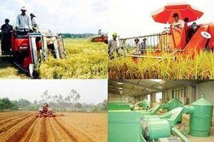 Hà Nội: Thúc đẩy chuyển dịch kinh tế nông thôn