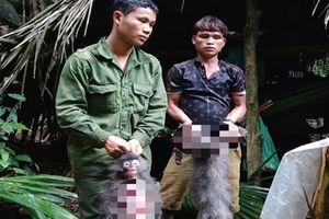 Tàn sát 2 cá thể voọc xám quý hiếm, nhóm thợ săn đối diện với án tù