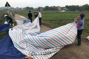 Hà Nội: Tạm thời giải quyết được 'khủng hoảng rác'