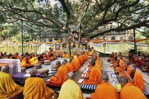 Những linh địa phải đến một lần trong đời (Kỳ 1): Nơi Đức Phật nhập định