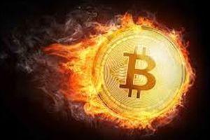 Tài chính 24h: Tiền ảo rơi vào 'bão' giảm giá