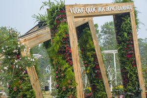 Lễ hội Hoa hồng - địa điểm nhất định phải 'check in' Tết này