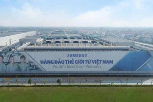Chủ tịch Thái Nguyên: Coi Samsung là một con ong chúa để ứng xử!