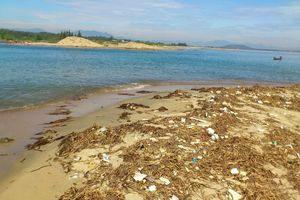 Quảng Ngãi: Cửa biển bồi lấp, hậu cần nghề cá gặp khó