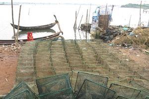 Cần ngăn chặn tình trạng tận diệt thủy sản trong đầm, hồ tại Phú Yên