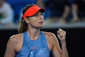 'Búp bê Nga' Sharapova thắng dễ Peterson ở vòng 2 Australian Open