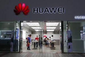 Đức cân nhắc loại Huawei khỏi chiến lược 5G của mình