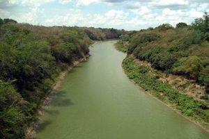 Nghiên cứu và dự báo xâm nhập mặn tại lưu vực sông Cauto, Cuba
