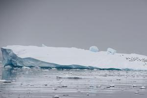 Băng tan ở Nam Cực đã tăng gấp 6 lần kể từ thập niên 70
