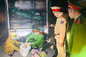 Bắt giữ xe tải vận chuyển 1,7 tấn da lợn bốc mùi vào Thanh Hóa tiêu thụ