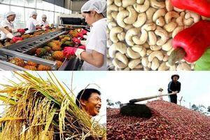 Nông nghiệp trước vận hội mới từ các FTA