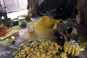 Phát hiện cơ sở sản xuất riềng xay trộn lưu huỳnh