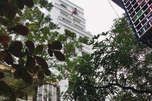 Hàng loạt công trình vi phạm, vì sao UBND phường Nguyễn Du không xử lý?