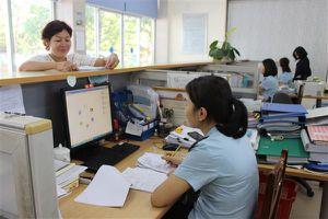 Rà soát khoảng 560 mã số nhân viên đại lý đã hết hạn hoặc gần hết hạn